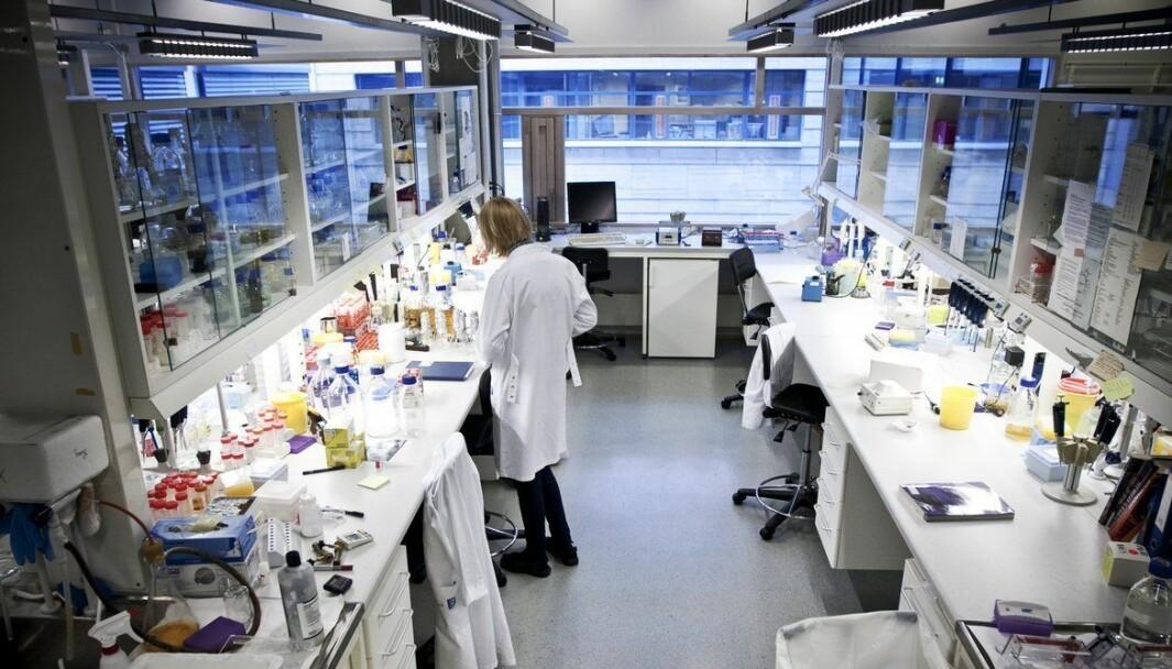 """<span class="""" font-weight-bold"""" data-lab-font_weight_desktop=""""font-weight-bold"""">MASSEVAKSINERING:</span> Det blir stadig klarere hvordan vaksineringen av Trondheimsbefolkningen skal gå til."""