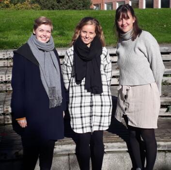Mari Mostrøm Nilssen (f.v), Ellen Margrethe Romsaas og Agnes Dalgard er studentene bak byggeprosjektet som skal rehabilitere Strossa.