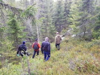 PÅ BEFARING: Etter hvert viste det seg at det var bedre å bygge terrengsykkelpark på Nilsbyen enn i Granåsen