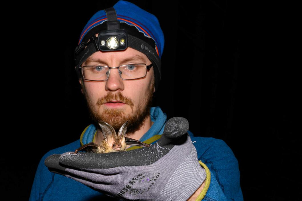 NATTDYR: Rune Sørås holder en brunlangøre, som foretrekker å jakte i mørke skoger.