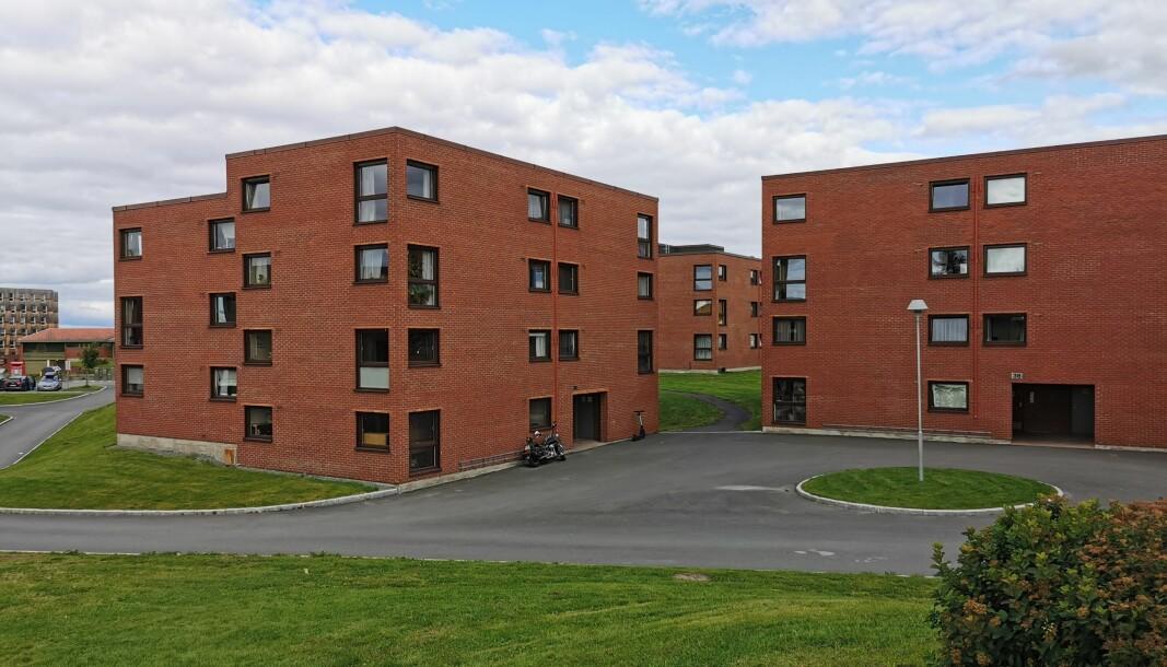 <b>PUSSES OPP:</b> Disse bygningene er blant dem som blir oppgradert i Moholt Allé, med nye bad og boenheter i kjellerne.