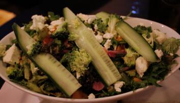 <b>SALAT:</b> Sesongens salat var en god opplevelse.