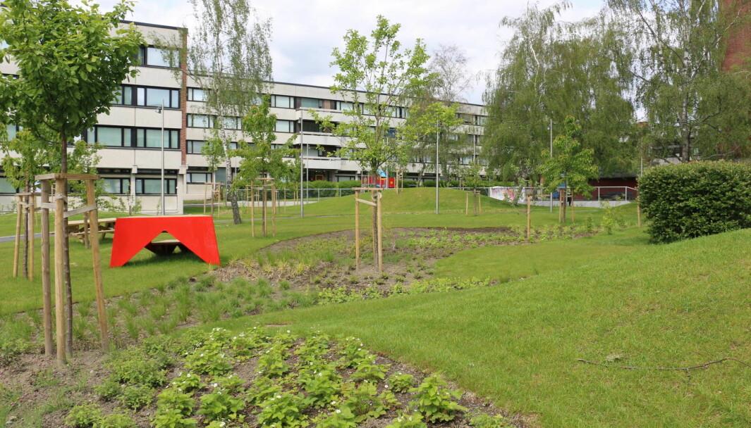 <strong>GRATIS HURTIGTEST: </strong>Studentsamskipnaden i Oslo deler ut gratis hurtigtest til alle beboerne i Norges største studentby.