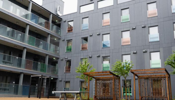 <strong>CAMPUSLIVET: </strong>Campus Life på Nardobakken har mange likhetstrekk med 360 Campus, men tilbyr også parboliger og ettromsleiligheter.
